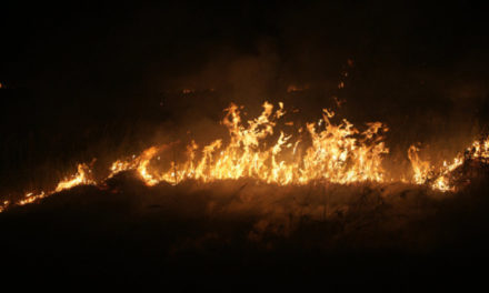 INCENDIE A DAROU SALAM – Un enfant de 10 ans perd la vie sous les flammes