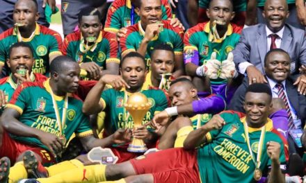 Le Cameroun en danger !