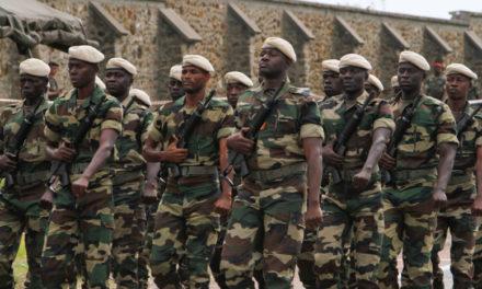 À nos vaillantes forces de défense et de sécurité