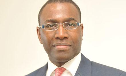 Croissance économique du pays : Amadou Hott plaide pour l'investissement privé