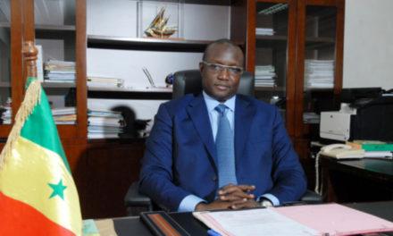 Mouhamadou Makhtar Cissé : «Notre pays sera plus un futur pays gazier que pétrolier»…