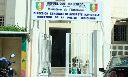 Thierno Alassane Sall et Mamadou Lamine Diallo convoqués par la Dic