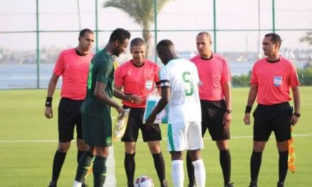 MATCH AMICAL : Les Lions déplument les Super Eagles