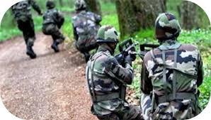 Arrêtés par l'armée à Diouloulou, les deux hommes de Salif Sadio libérés
