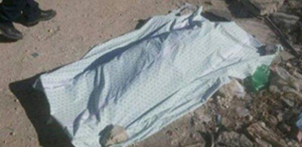 CANICULE – Un jeune berger tué par la chaleur