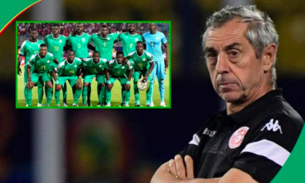 Alain Giresse : «Je connais très bien l'équipe du Sénégal»