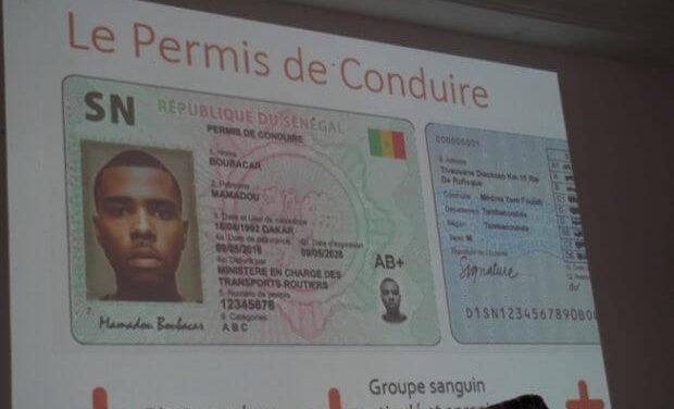 RECRUDESCENCE DES ACCIDENTS AU SENEGAL : Pourquoi la proposition de loi sur le permis à points est bloquéeà l'Assemblée ?