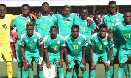 JEUX AFRICAINS RABAT 2019 : les Lionceaux éliminés en demi-finale