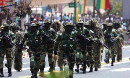 Mission de la Cedeao en Guinée-Bissau : Le Sénégal déploie 205 militaires