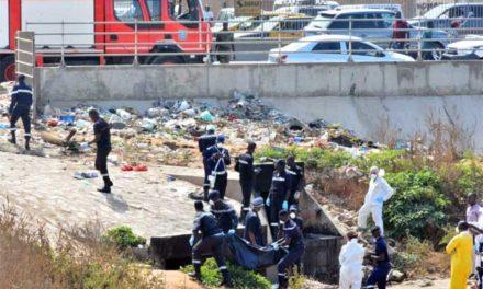 HORREUR AU TECHNOPOLE – Le cadavre d'une femme retrouvé avec les yeux arrachés