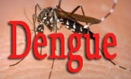 KAFFRINE  – Trois nouveaux cas de Dengue décelés