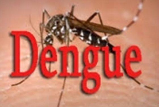SANTE – La Dengue de retour au Sénégal