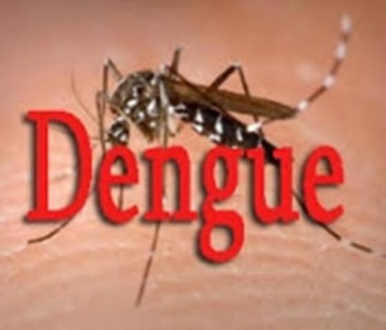 ALERTE – Après le Covid, le Sénégal face à la Dengue