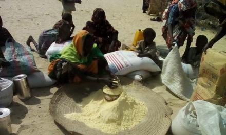 ALERTE– Le Sénégal sous la menace d'une «insécurité alimentaire accrue»