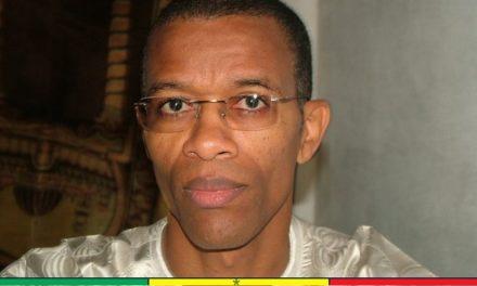 """Greenpeace Afrique répond à Aliou Ndoye: """"Il est indispensable de geler tout ce qui touche à l'industrie de la farine"""""""