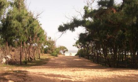 LITTORAL DE GUEDIAWAYE – Les jeunes révoltés après l'octroi de 8 ha à des Chinois