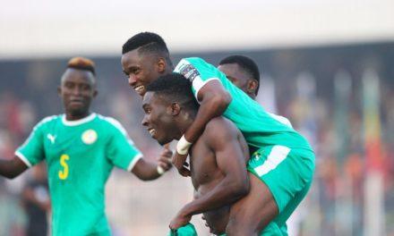 COUPE ARABE U20 – Les Lionceaux en finale