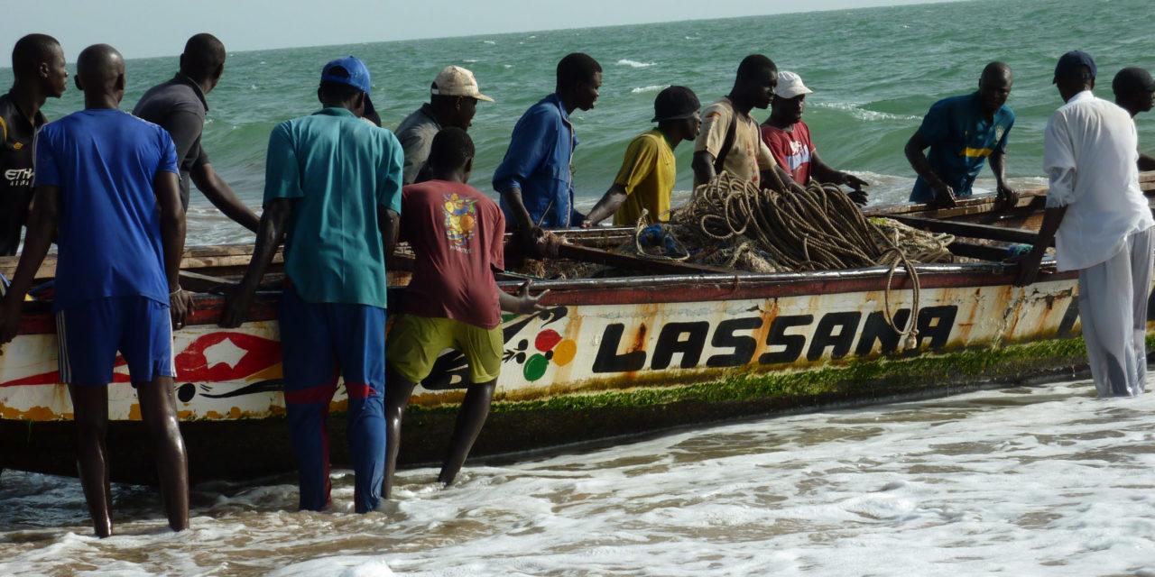 Un conseil présidentiel sur le secteur des pêches prévu en mai