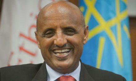 """ECONOMIE – Ethiopian Airlines, la première compagnie africaine, se bat """"pour sa survie"""""""