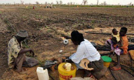 COVID-19 – Les agences humanitaires débloquent plus de 6,4 milliards pour le monde rural
