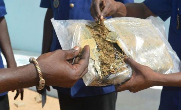 MBOUR – Une demi-tonne de yamba saisie