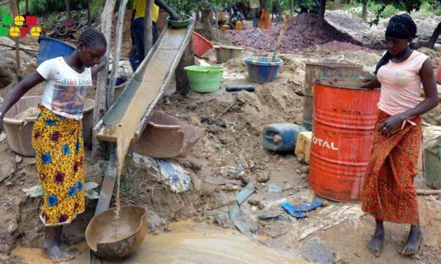 SARAYA- 5 sites d'orpaillage clandestins démantelés, 377 personnes arrêtées