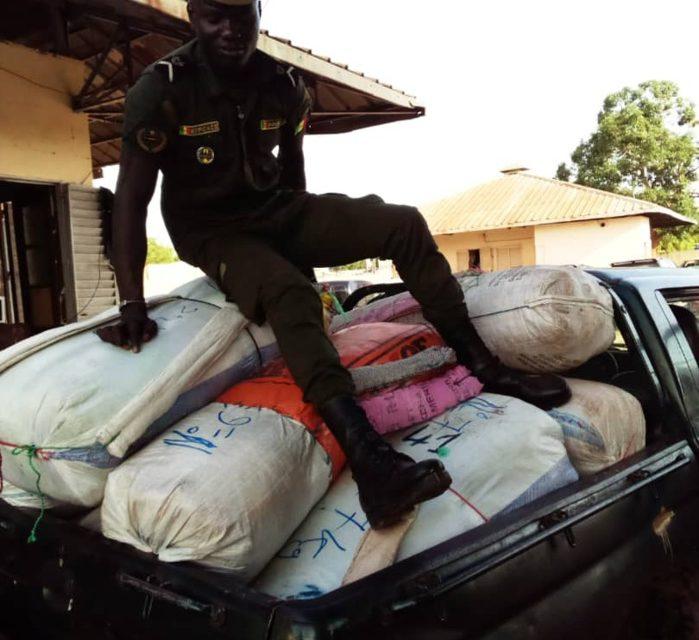 FOUNDIOUGNE – Saisie de 456 kg de chanvre indien