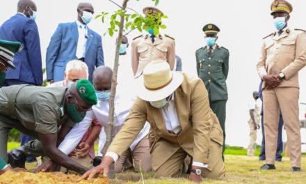 AUTOROUTES DU SENEGAL – Des projets de reboisements initiés