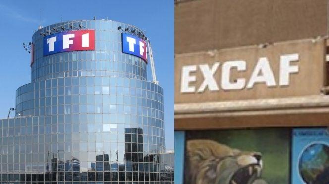 JUSTICE  – Tf1 gagne son procès contre Excaf Telecom