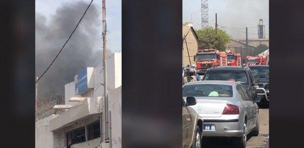 VIDEO – Incendie aux alentours du Môle 10