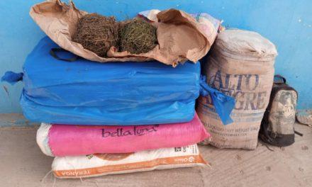 SEDHIOU- 64 Kg de chanvre indien et des produits pharmaceutiques saisis