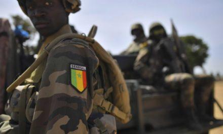 Mali : 7 militaires sénégalais blessés
