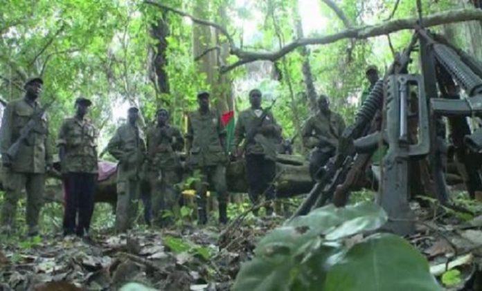 CASAMANCE – Plusieurs chefs rebelles déposent les armes