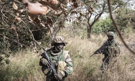 CASAMANCE – L'armée détruit deux postes de contrôle du MFDC