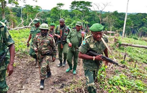 RDC – Une attaque présumée des Forces démocratiques alliées fait 13 morts
