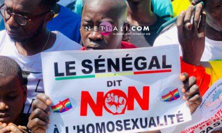 (PHOTOS) CRIMINALISATION DE L'HOMOSEXUALITE – Le peuple met la pression sur l'Assemblée nationale