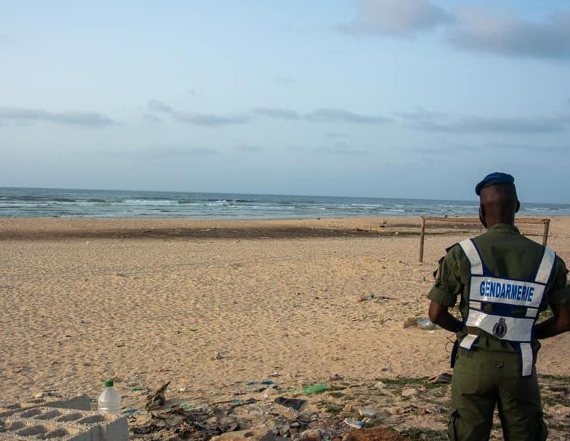 ALERTE SUR LA SANTÉ DES USAGERS DE LA MER – Une micro-algue toxine sévit dans la presqu'île du Cap-Vert