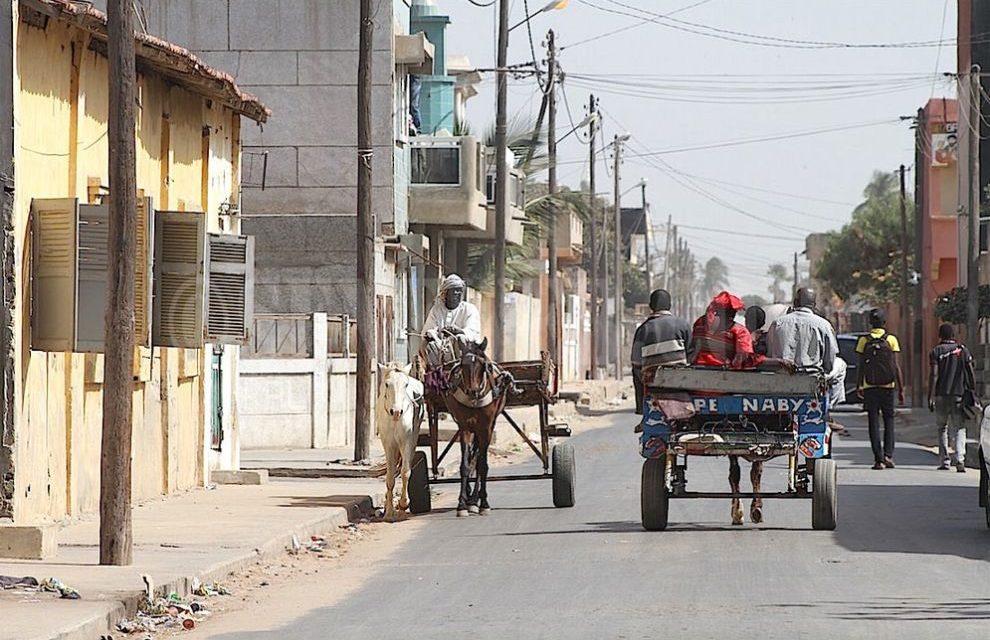 CONQUETE DE LA VILLE DE RUFISQUE – Ismaëla Madior Fall et Souleymane Ndoye, la guerre totale !