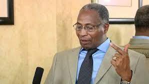 AMADOU OURY BAH PRÉSIDENT DE UDRG – « La situation au Sahel notamment au Mali ne sera jamais résolue par la puissance des armes »